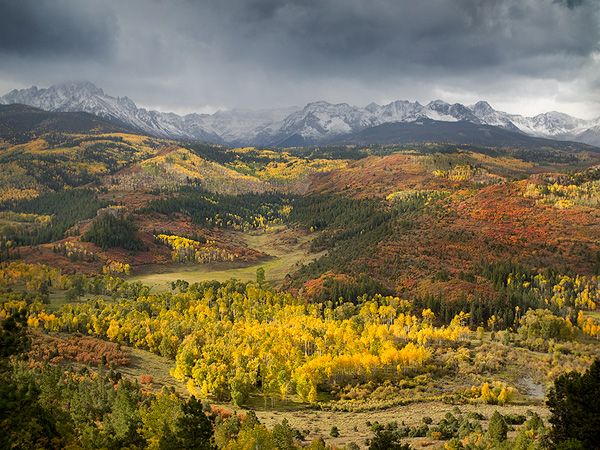 Aspens, Storm Light